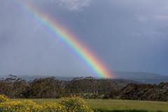 A Rainbow over Wilson Inlet, Denmark, WA. DSC_9733